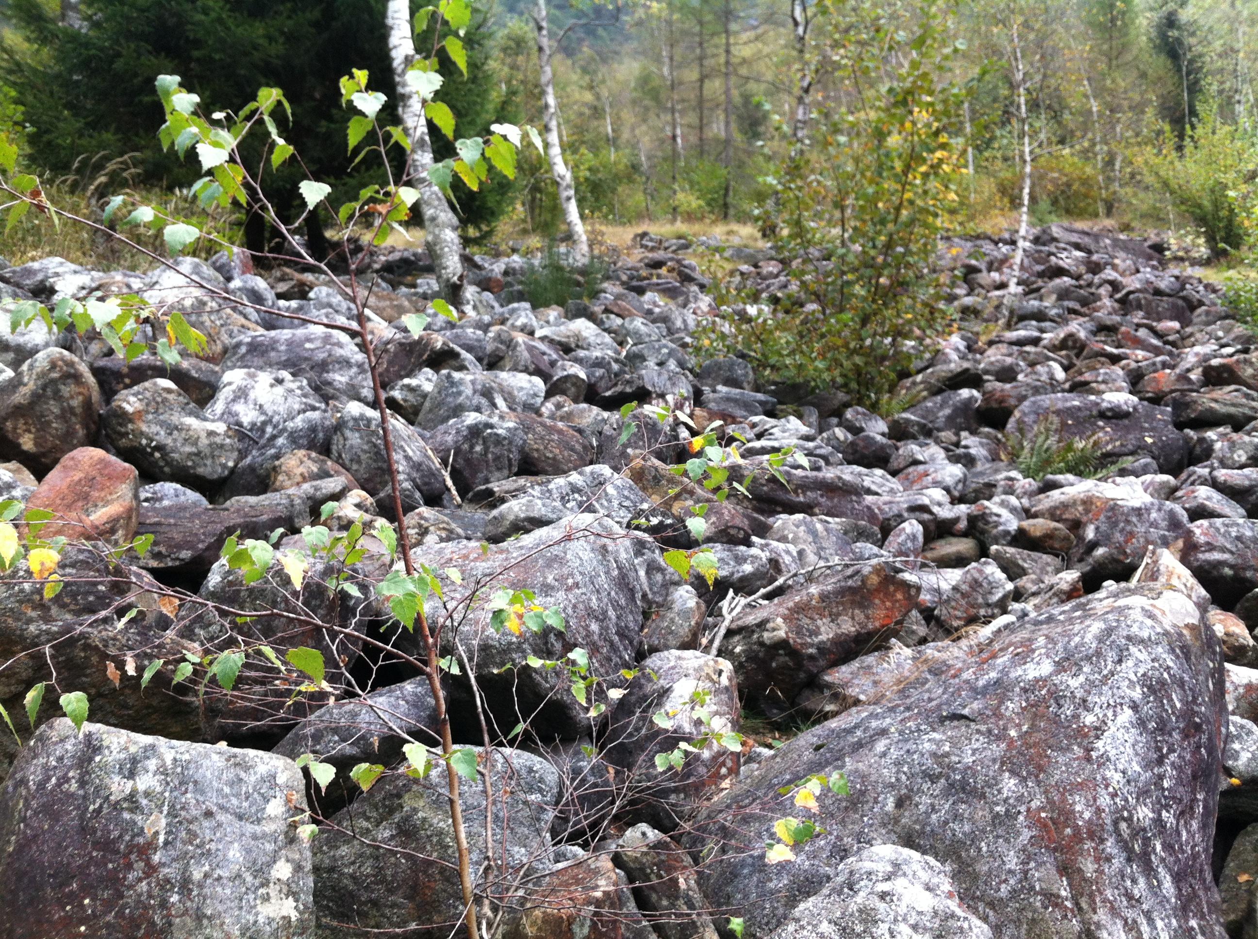 Steinfluss